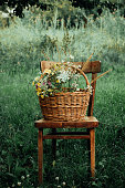 Basket with a bouquet of meadow flowers and a sunflower on a chair in the garden. Retro style, vintage.