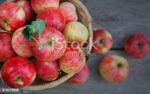istock Basket with apples harvest in garden, top view 615413848