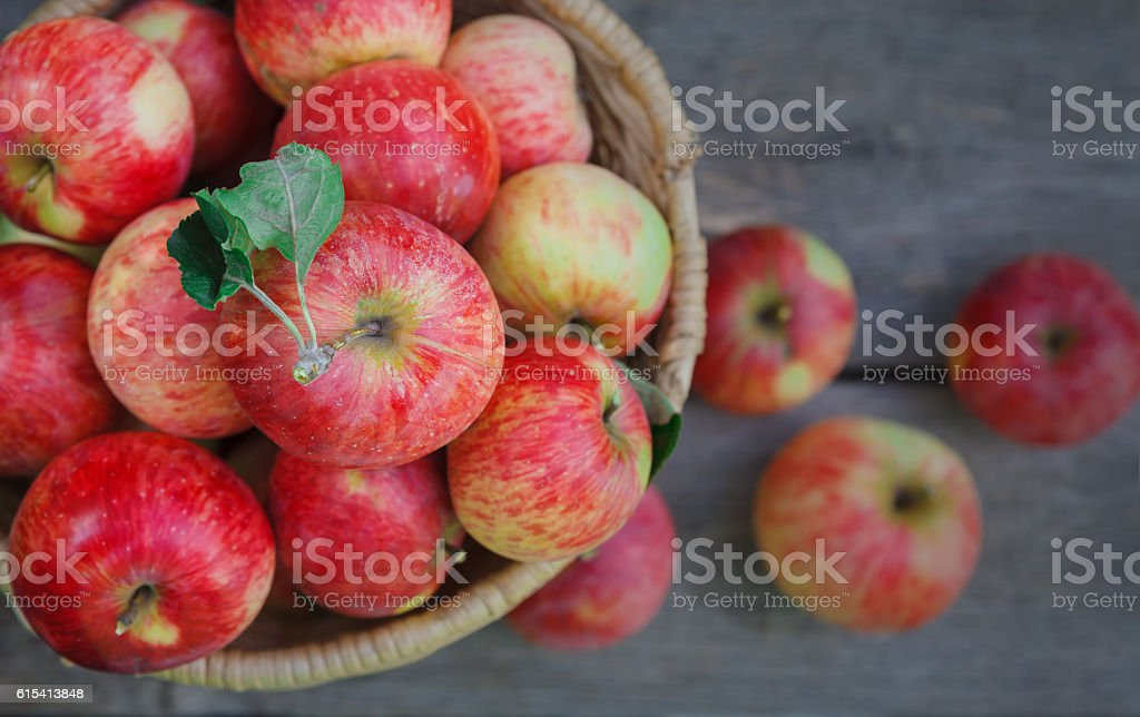Basket with apples harvest in garden, top view - foto de stock