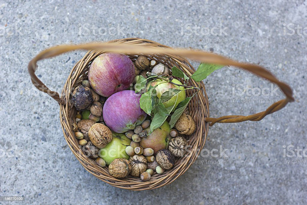Basket with apples, hazelnuts and nuts royalty-free stock photo
