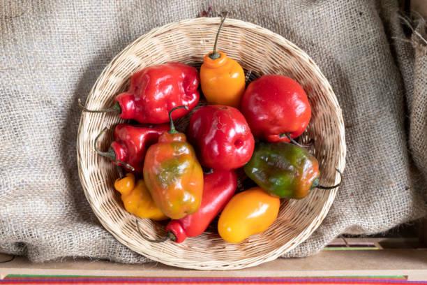 帶辣椒的籃子。帶胡椒的桌子。桌布與辣椒。圖像檔