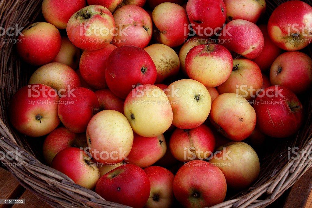 Basket with fresh organic apples stock photo