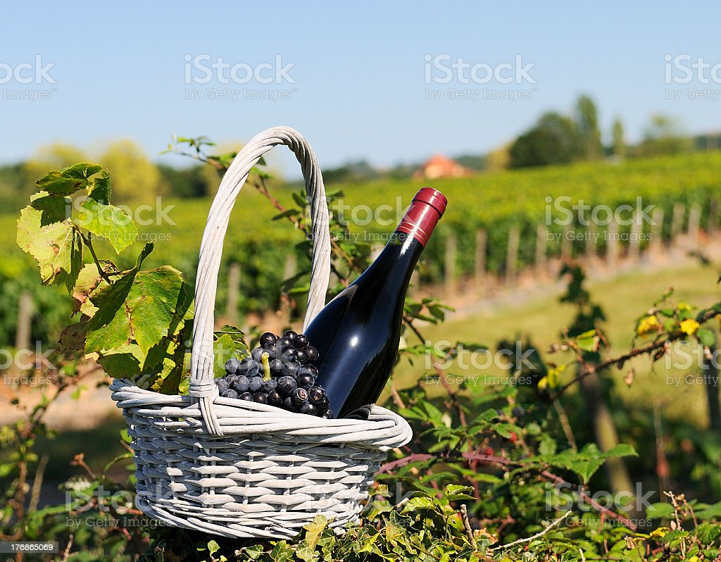 Basket with grapes and bottle of red wine stock photo