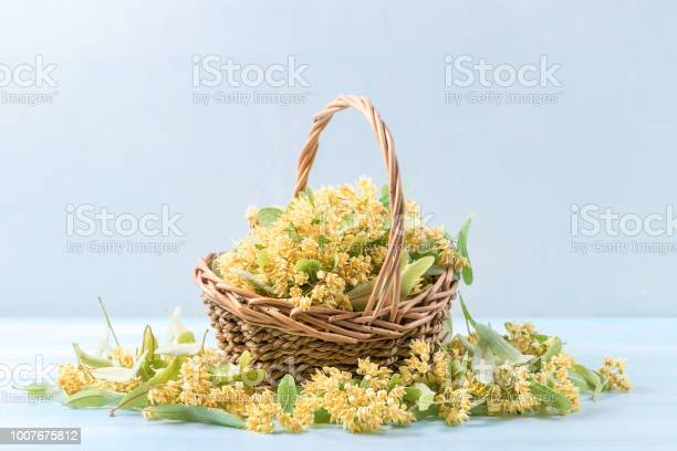 Basket with linden flowers on a wooden table picture id1007675812?b=1&k=6&m=1007675812&s=612x612&h=eu4zwdzyassqbhuplvjrf8nkfjb1skwvp kkglaweu4=