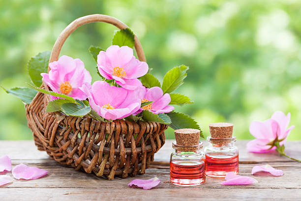 Basket with pink rose hip flowers and bottles of oil Rustic wicker basket with pink rose hip flowers and bottles of essential roses oil. wild rose stock pictures, royalty-free photos & images