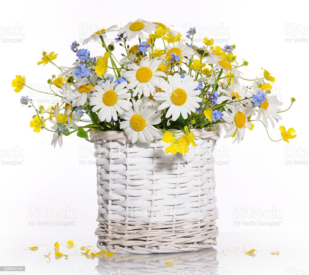 basket with spring flowers stock photo