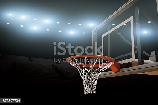 517960203 istock photo Basketball Stadium Background Copy Space 875307704