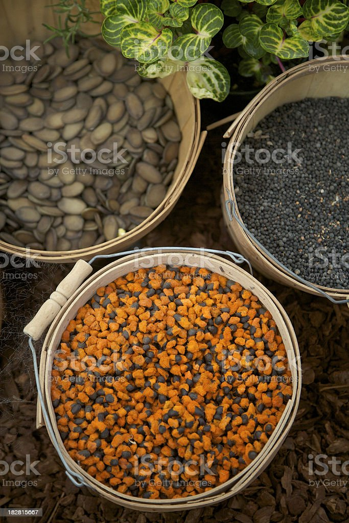 Baskets of Beans and Seeds, Food, Produce royalty-free stock photo