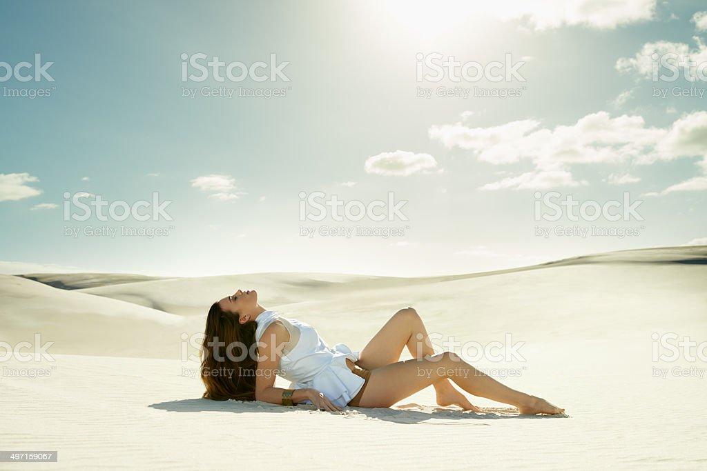 Basking under the desert sun stock photo