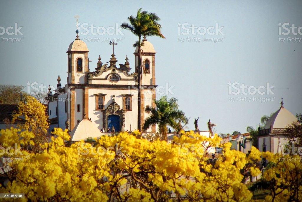 Basílica e o Ipê - foto de acervo