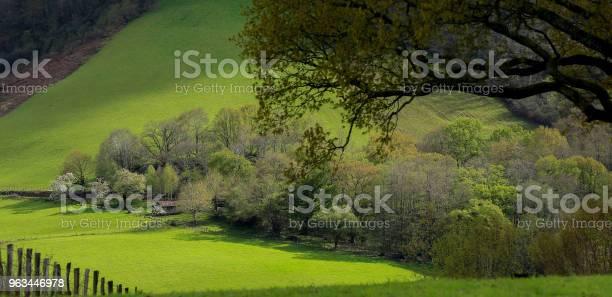 Kraj Basków - zdjęcia stockowe i więcej obrazów Bez ludzi