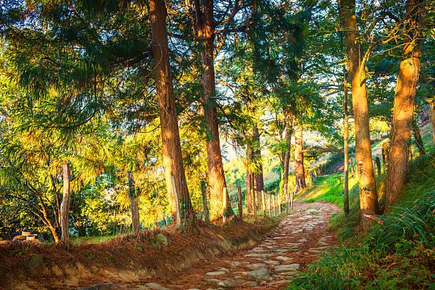 País Basco Espanha paisagem perto do Vila Orio - foto de acervo