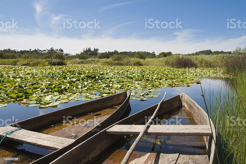 Bass Boat royalty-free stock photo