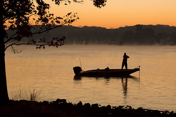 bass fisherman on lake at dawn - fishing boat stock pictures, royalty-free photos & images