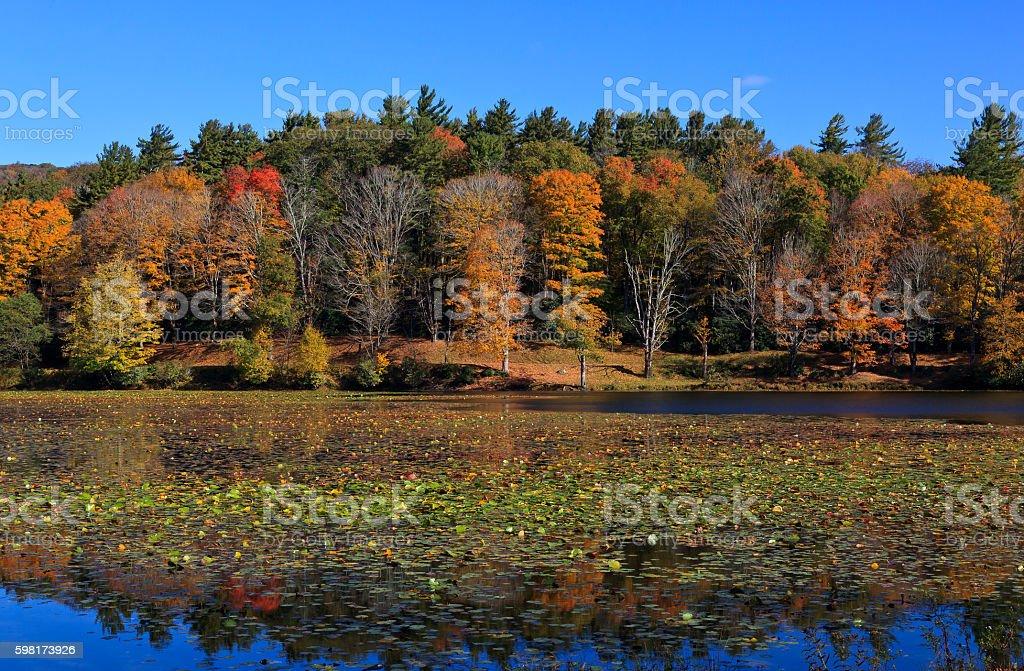 Bass Lake in North Carolina stock photo