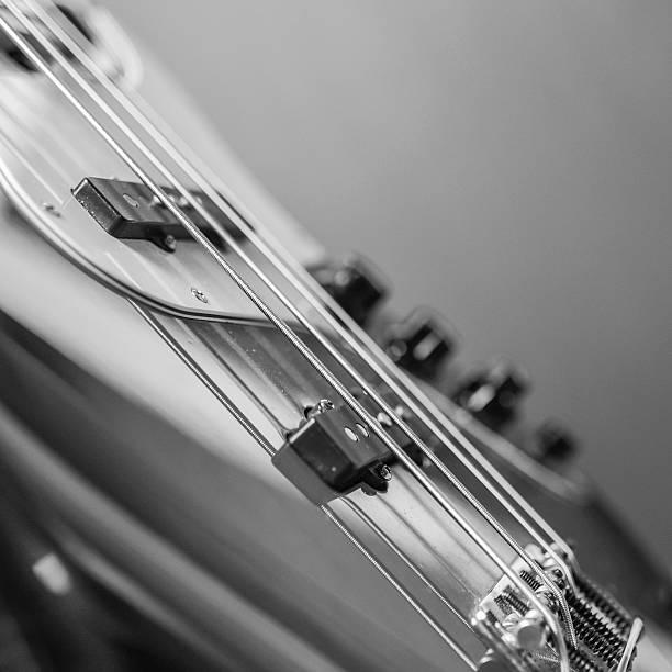 Bass – Foto