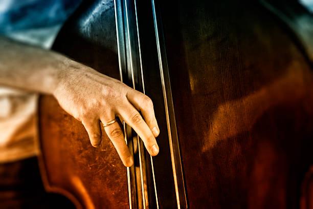 bass player stock photo