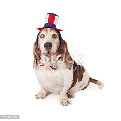 istock Basset Hound Wearing Patriotic Hat and Tie 517873261