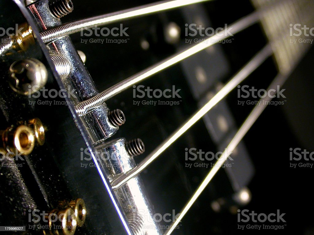 Bass-ically royalty-free stock photo
