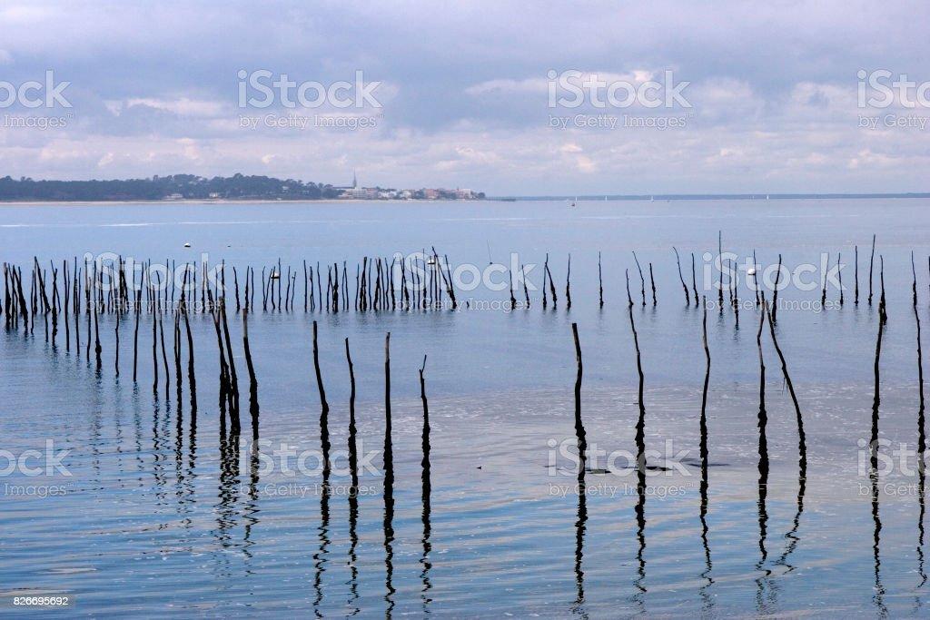 Bassin d''Arcachon - Photo