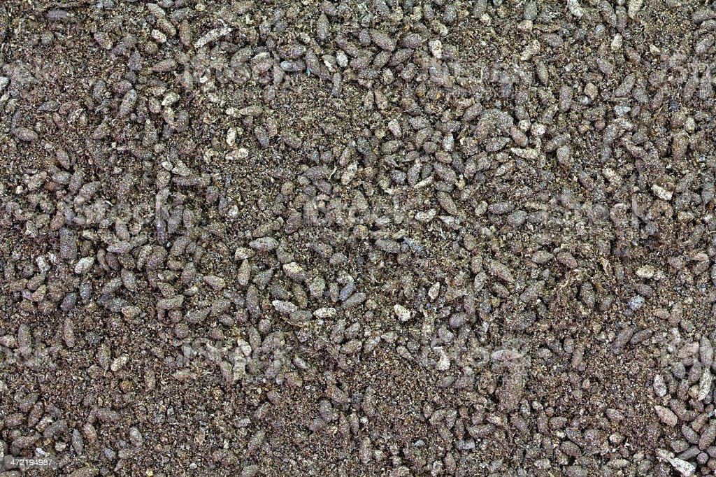 Bat Guano Fertilizer stock photo