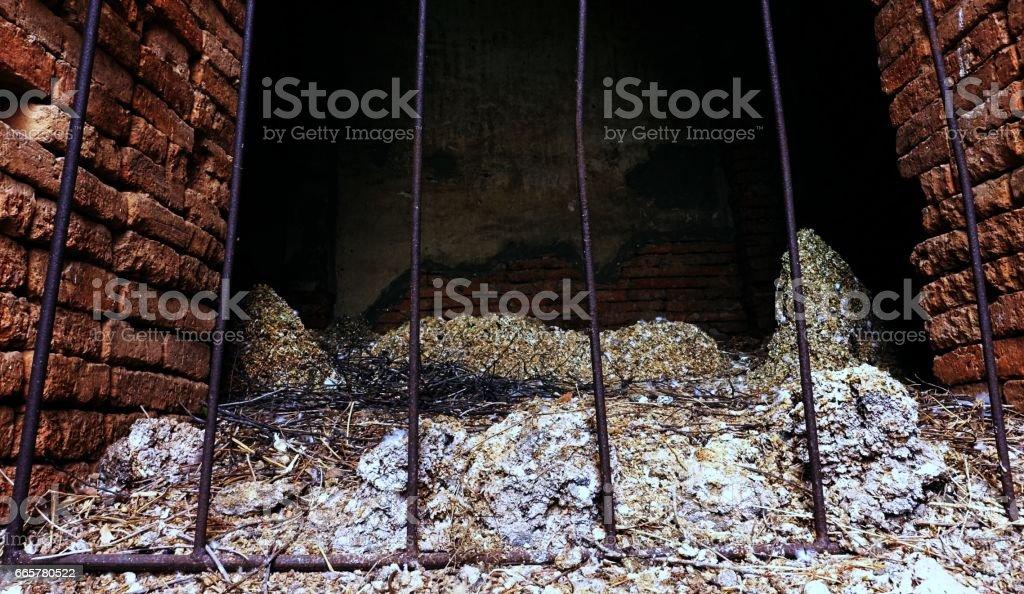 Bat Guano stock photo