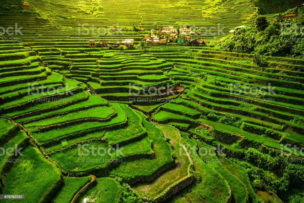 Batad Rice Terraces, North Luzon, Philippines stock photo