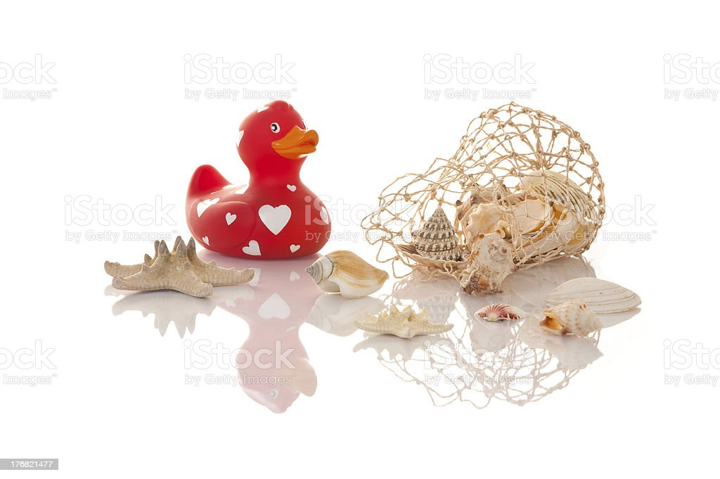 Bath duck with seashells and a starfish royalty-free stock photo