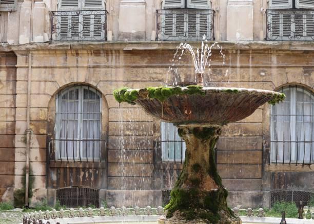 un bain de mousses - josianne toubeix photos et images de collection