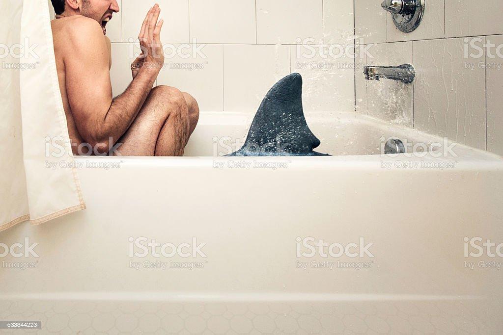 Attaque de requin - Photo