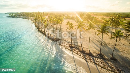 Aerial view of tro beach in the sunny afternoon. Juanillo beach, Dominican Republic.