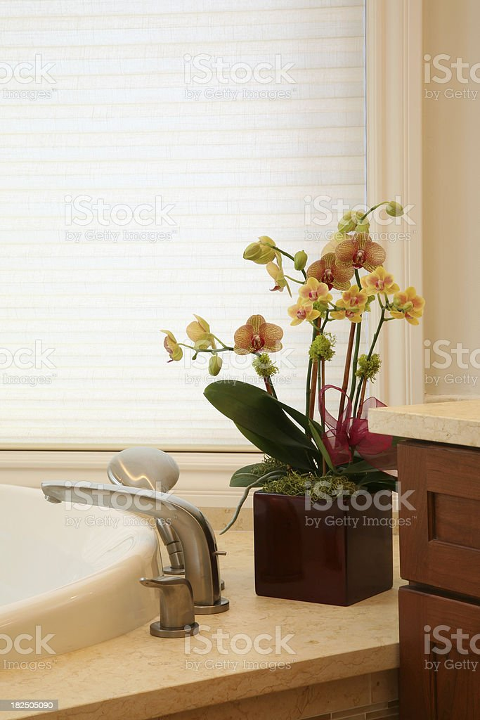 Bathroom Decoration royalty-free stock photo