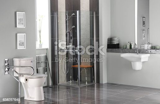 istock Bathroom for disabled 638257640