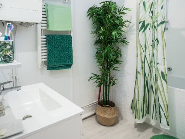 Bathroom in French Apartment stock photo