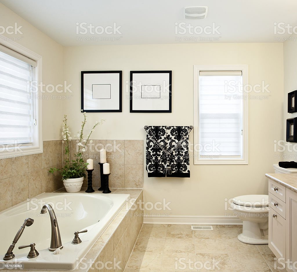 Bathroom Interior Professionally Decorated royalty-free stock photo