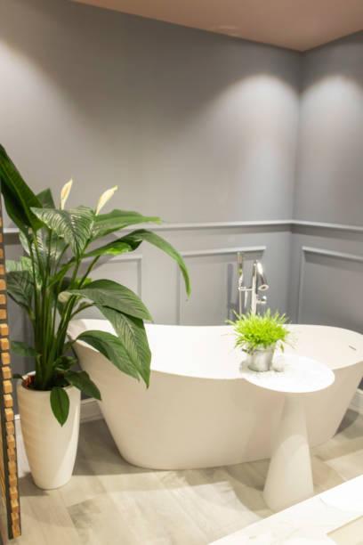 badezimmer-stil retro pariser herrenhaus typ haussmanien mit einer badewanne huf eine schöne grüne pflanze eine weiße pekanundundin und anthrazitgraue wände - französisches haus dekor stock-fotos und bilder
