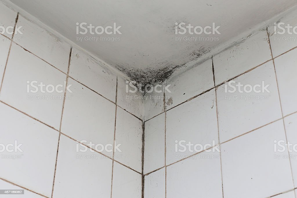 Bagno con piastrelle soffitto e stampi fotografie stock e altre