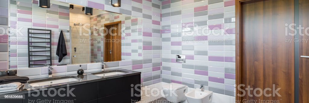 Bathroom with bidet and toilet royalty-free stock photo