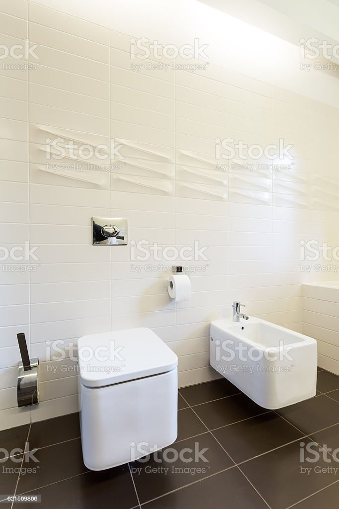 Bathroom with tooilet and urinal photo libre de droits