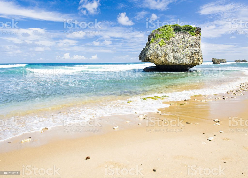 Bathsheba beach in Barbados by the clear ocean stock photo