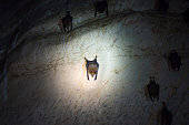 istock Bats colony in natural cave 1179436128