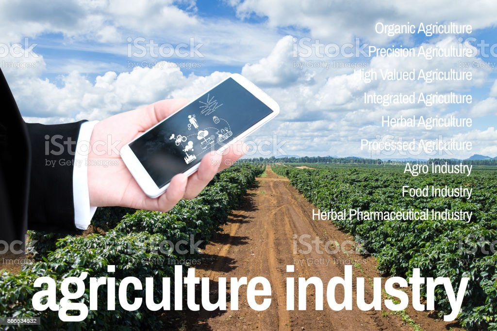 Bausiness man and looking at mobile Agriculture Technology Agritech stock photo