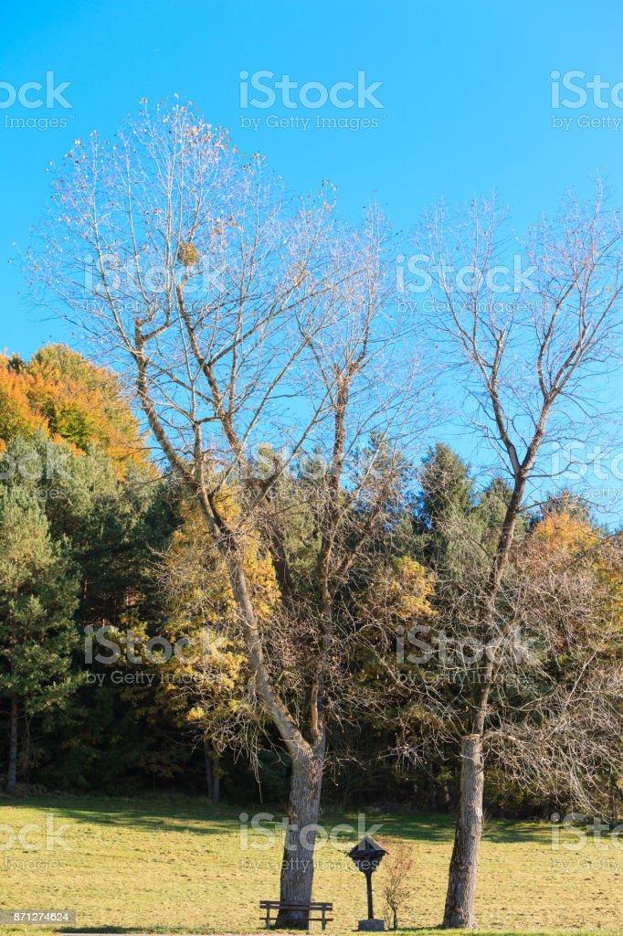 Bavarian crossroads between Two trees stock photo