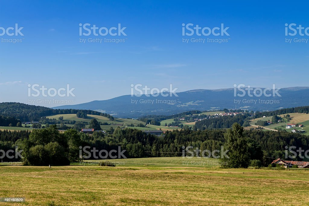 Bavarian Forest stock photo