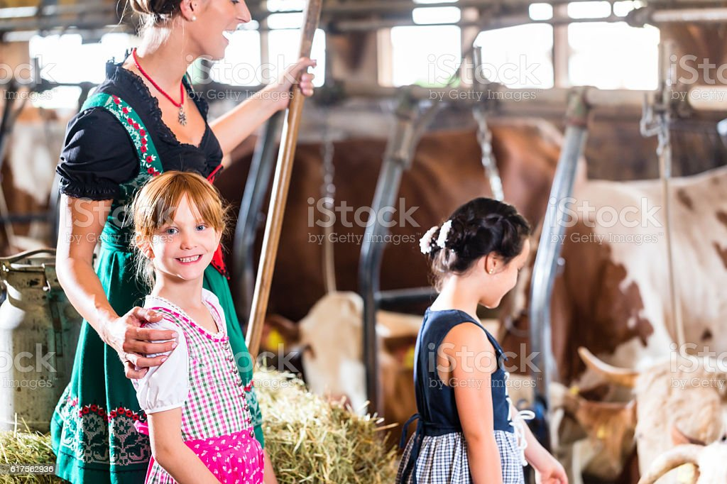 Bavarian mother showing children cows in cowhouse stock photo