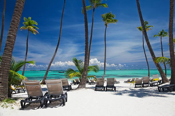 Bavaro beach in punta cana picture id155357349?b=1&k=6&m=155357349&s=612x612&w=0&h= dqmbvcdrive5qvnlwuyshnkm0lp bihwhg2slbw5ri=