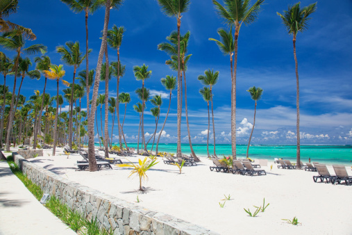 Bavaro Beach On A Sunny Day In Punta Cana Stock Photo - Download Image Now