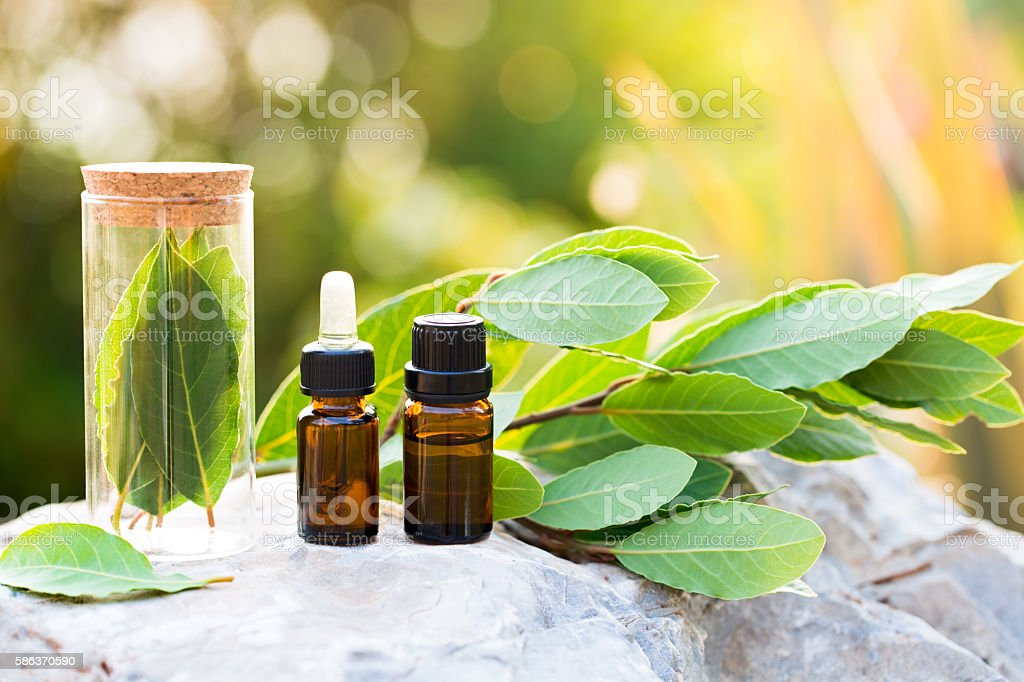 Bay essential oil stock photo