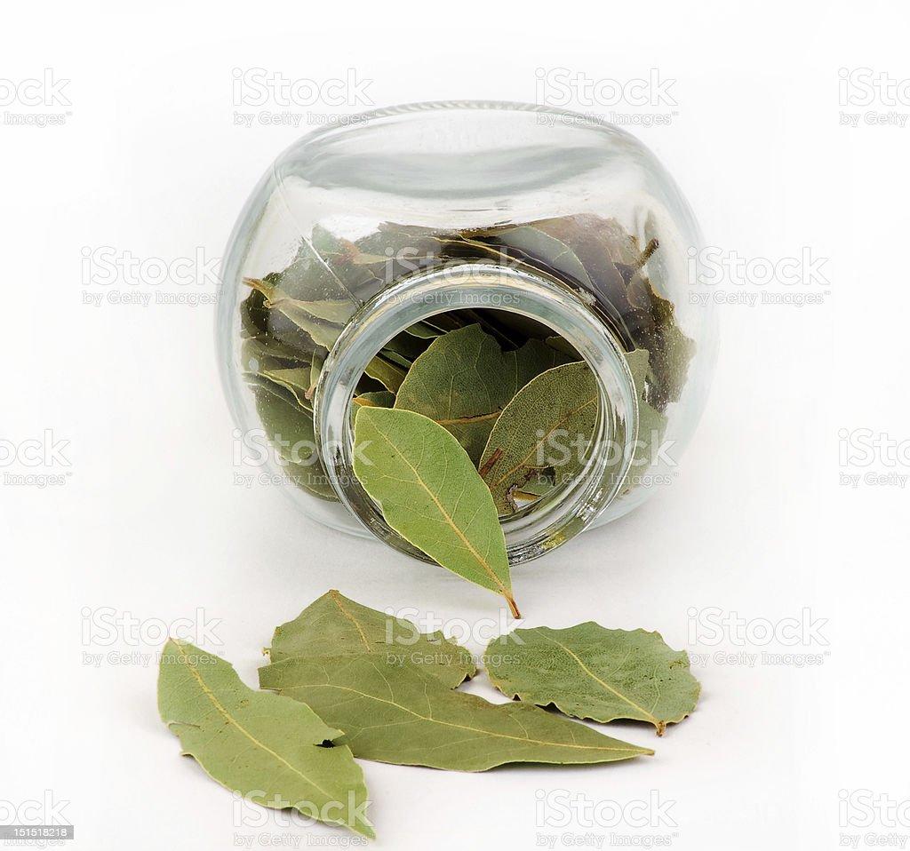 bay leaf royalty-free stock photo