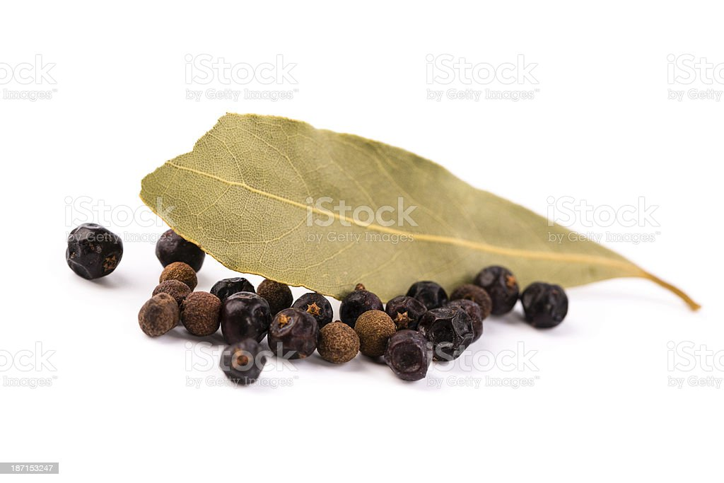 bay leaf with  juniper royalty-free stock photo